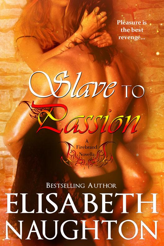 Slave To Passion (Firebrand Series Book 2)