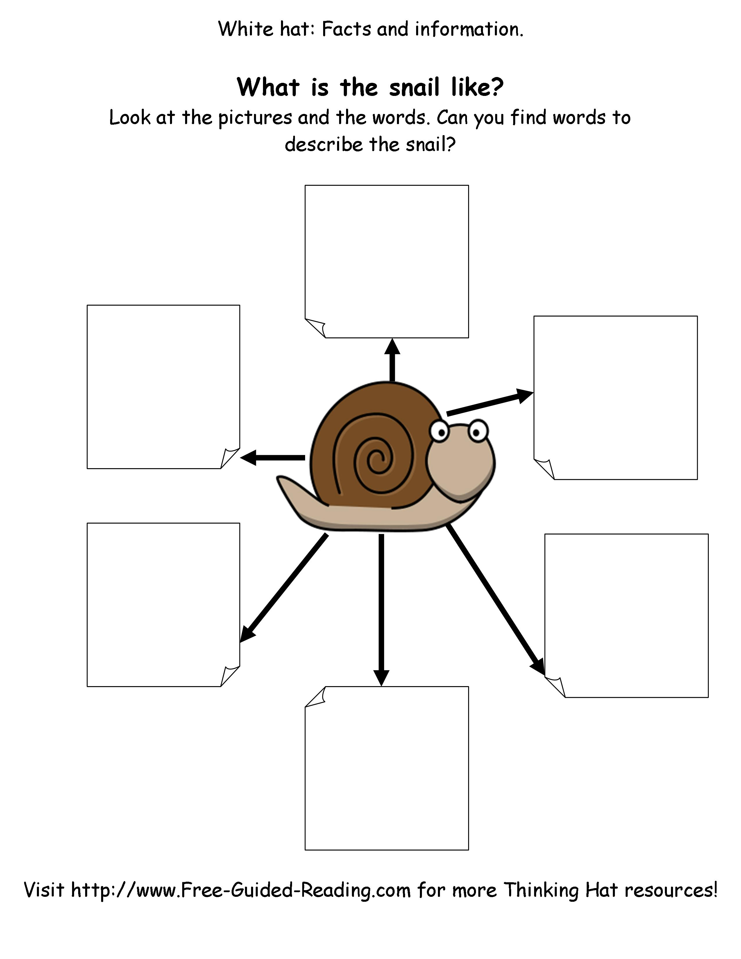 Smashwords 16 Thinking Hat Worksheets For The Snail And The Whale A Book By Peter Fogarty Page 1